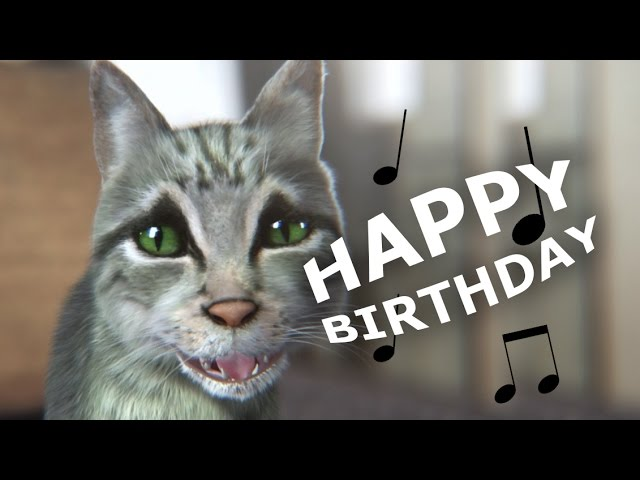 Cute But Funny Cat Sings Happy Birthday Youtube