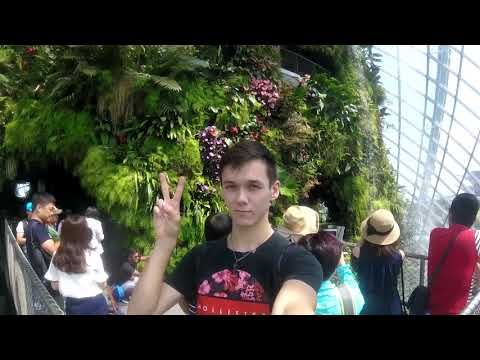 Singapore Week Three (Gardens by the Bay // Nat'l Museum)