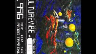 Culturevibe #4 1996