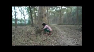 Indian farist little DECOVARY Boy On the Bight Forest open Story
