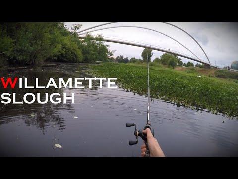 Belly Boat Fishing On The Willamette River (Salem, Oregon)