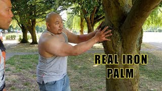 How to turn your hand into Real iron Palm part 2 - Master Wong
