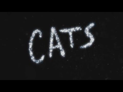 CATS México 2014 - TV Spot