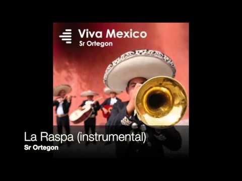 Sr Ortegon - La Raspa (instrumental)