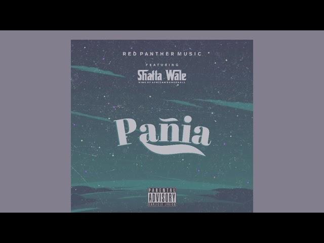Shatta Wale - Pañia (Audio Slide)