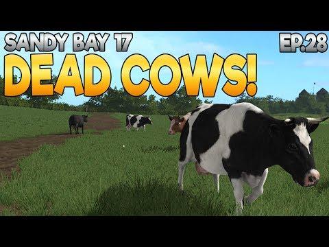 Sandy Bay 17 - Farming Simulator 17 -  Ep.28 (with Wheel Cam & Seasons Mod)