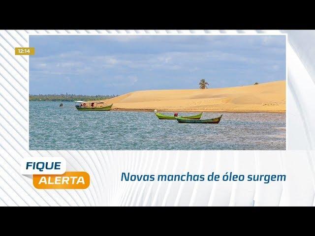 Novas manchas de óleo surgem na praia do Pontal do Peba