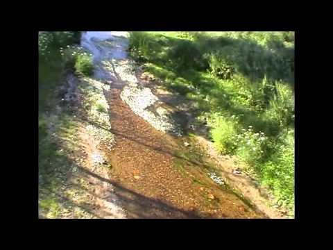 Cardiel De Los Montes A O 2010 Youtube