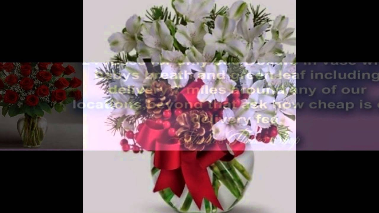 Flowers near lbj fwy in dallastxnorth dallas214 6947991 or 214 flowers near lbj fwy in dallastxnorth dallas214 6947991 or 214 4553957 izmirmasajfo