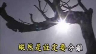 寄語白雲(離情)- 葉蔻 thumbnail