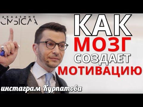 Акцептор результата действия, или Как мозг создает мотивацию. А.В. Курпатов, 12.08.2019