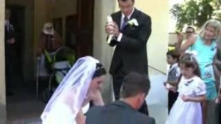 Svatební holubi / Wedding doves