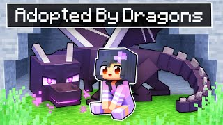 Adopted By DRAGONS In Minecraft!