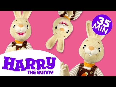 Learning Parts of the Body | The Face - Nose, Mouth, & Eyes | Body Parts for Kids | Harry the Bunny