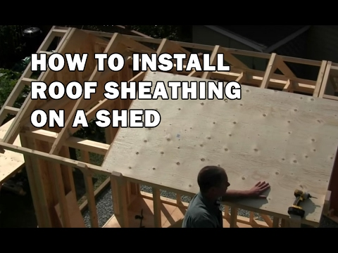 How to build a shed sheathing the roof video 10 of 15 for What to use for roof sheathing