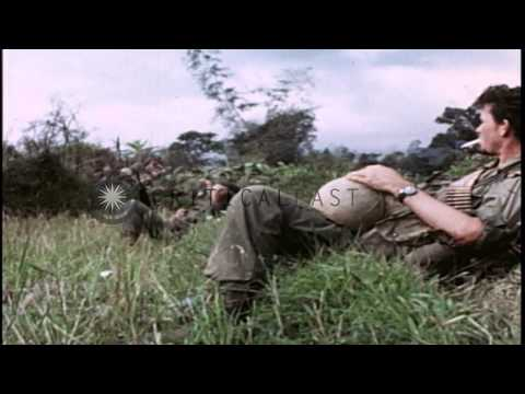 United States soldiers of 31st Infantry and 196th Light Infantry Brigade on searc...HD Stock Footage