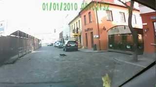Черный кот дорогу перешел - это к удаче!