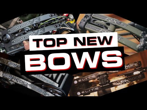 Top New Bows of 2021!