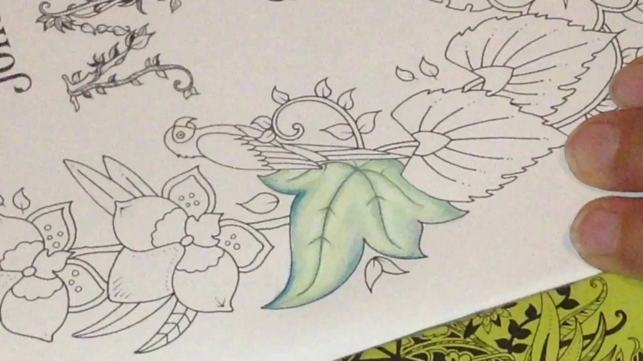 magical jungle by johanna basford part 1 of page 1 colouring