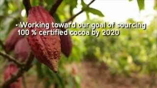 Mars and Cocoa Sustainability