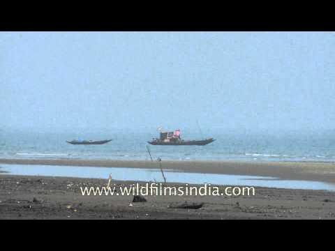Boat sailing along the coast of Bay of Bengal
