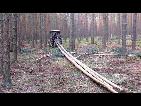 Ciągnik Yanmar w lesie, zrywka drewna