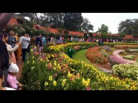 Mughal Garden - Rashtrapati Bhawan