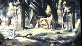 Video Opening To The Sword In The Stone 2001 VHS download MP3, 3GP, MP4, WEBM, AVI, FLV Oktober 2018