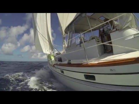 Paradise BVI Sailing