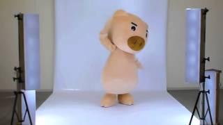 豊天商店(ぶーでんしょうてん)オリジナルキャラクター美豚(びぶた)...