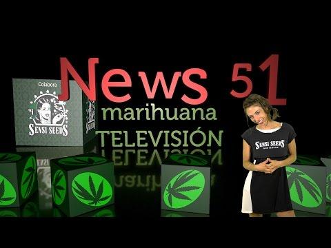 EXPOWEED México y ROTOTOM 2016 Marihuana Television News #51