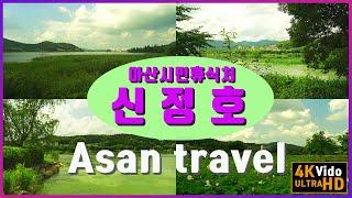 [4K 아산 신정호 국내 여행] 충남 언택드 여행지 추…