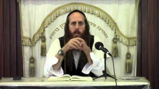 Controlling the Angels| Women's Lectures (Shiurim)