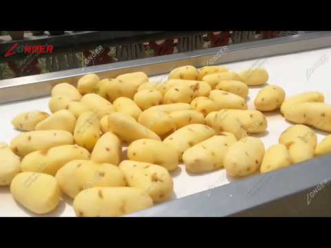 Industrial China 500kg/h Automatic Potato Frozen French Fries Production Line Youtube Video