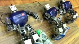 Занимательный урок по робототехнике в шк 1150