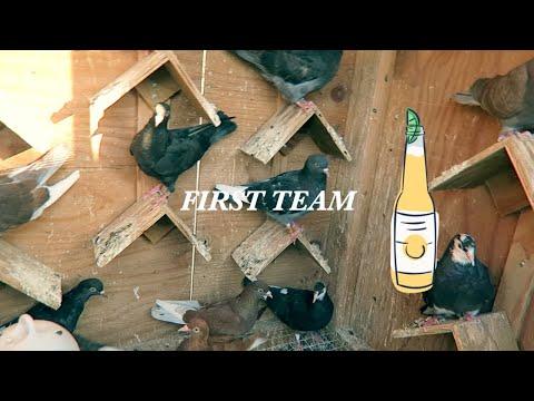 Birmingham Roller Pigeons Performance