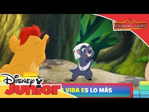 'zuka Guardia La León Vídeos Zama' Infantiles De Canción Del 0nP8wOk