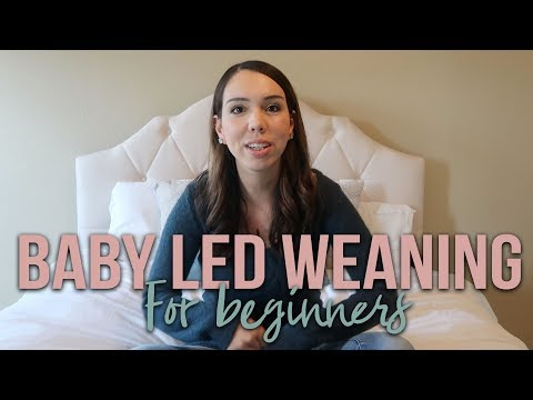 BABY LED WEANING | INFO + HOW TO START | FINGER FOODS FOR BABIES FOR BEGINNERS