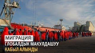 Миграция: глобалдык макулдашуу кабыл алынды (аудио)