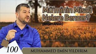 Mü'minin Misali Nelere Benzer? | Muhammed Emin Yıldırım (100. Ders)
