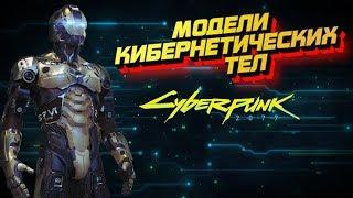 Модели кибернетических тел [Часть 1] | Cyberpunk 2020
