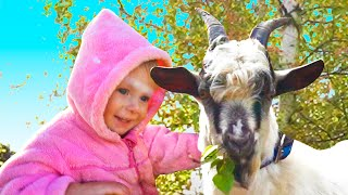 Help Animals Song +More Kids Songs by Maya and Mary