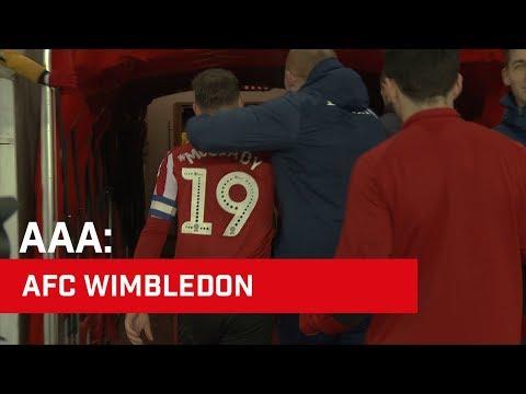 Access All Areas: AFC Wimbledon
