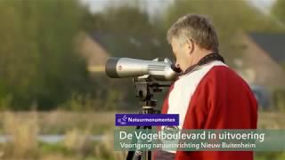 Voortgang Vogelboulevard project Nieuw Buitenheim nov 2017