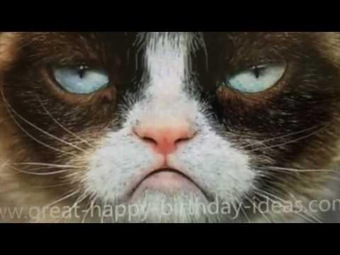 Grumpy Cat Happy Birthday