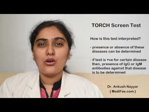 TORCH Screening - Pregnancy and Prenatal Testing