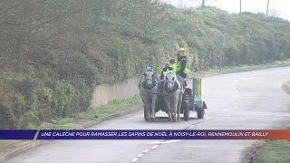 Yvelines | Une calèche pour ramasser les sapins de Noël à Noisy-le-Roi, Rennemoulin et Bailly