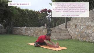 Видео уроки Открытой йоги. Поза голова к колену. Джану ширшасана.(Как выполнять Позу голова к колену, Джану ширшасану? Повествование о хатха-йоге (традиция Анандасвами)...., 2015-11-17T19:28:11.000Z)
