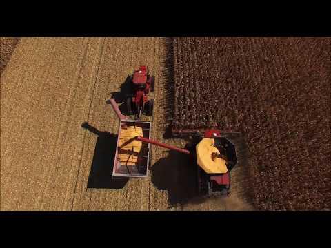Floyd Iowa 2016 Corn Year