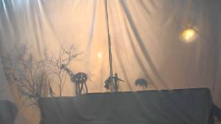 The Foolish People & The Wise Animals | Shadow Puppet Stories | Clanwilliam | July 2014 | CBN